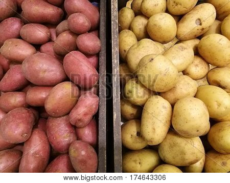 Fresh organic potato and sweet potato stand out among many potato background in the basket in supermarket. Heap of potato root. Close-up potatoes texture Macro potato