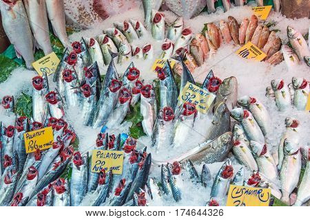 Fish on ice for sale at a market in Istanbul, Turkey