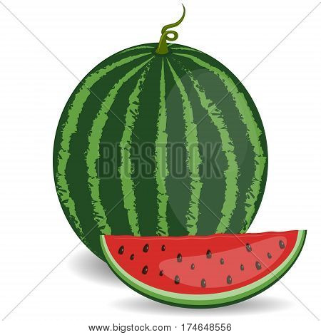 Half of ripe watermelon isolated on white background. Watermelon cut in half