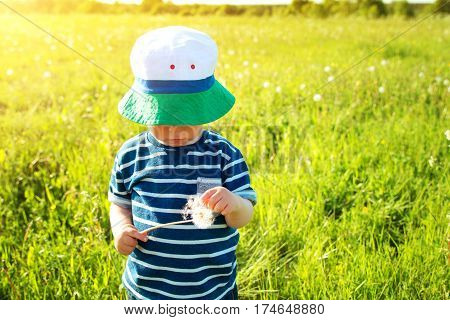Happy baby boy standing in grass on the fieald with dandelions at sunny summer evening. Smiling child outdoors