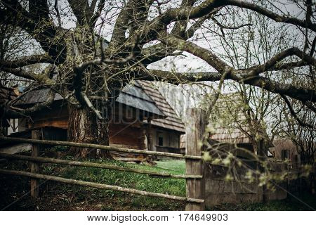Old Wooden Fence Near Apple Tree In Russian Village, Rustic Fence On Pagan Slavic Settlement, Nation
