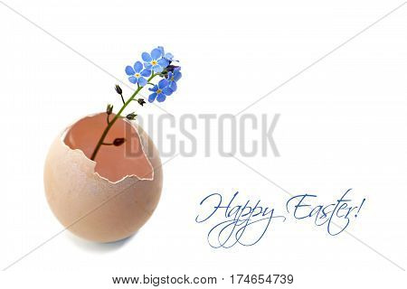 Happy Easter card with spring flowers in eggshell