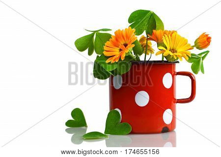 Marigold flowers and heart-shaped leaves in the old mug