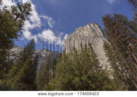 El Capitan - Looking high into the face of El Capitan in Yosemite.