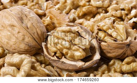 Many walnuts shelled and in-shell macro in a pleasant light