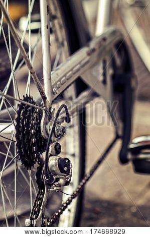 Bicycle. Chain And Rear Gear.