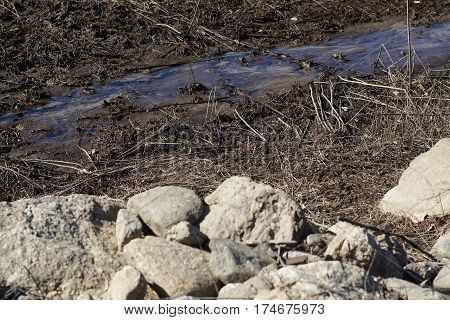 Mountain Stream Surrounded By Pebbles, Sand And Dry Leaves