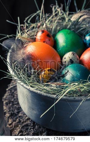 Closeup Of Colourfull Eggs For Easter On Hay