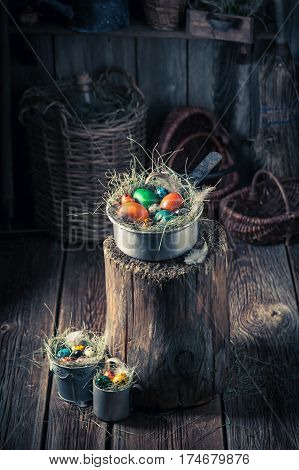 Colourfull Easter Eggs In The Nest With Hay