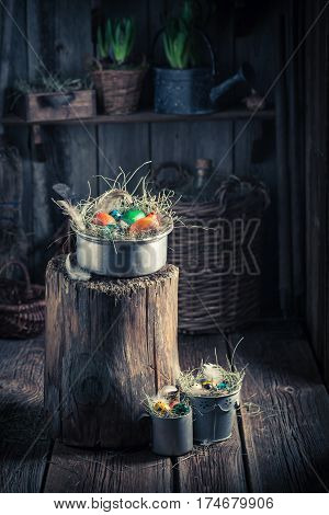 Various Easter Eggs With Hay And Feathers