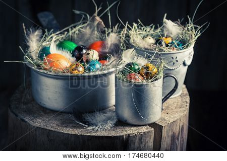 Colourfull Eggs For Easter In The Rustic Cottage