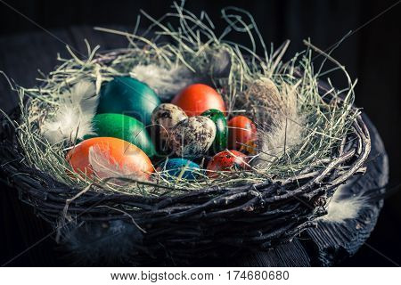 Various Easter Eggs In Wooden Small Henhouse