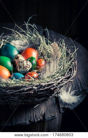 Colourfull Eggs For Easter With Hay And Feathers