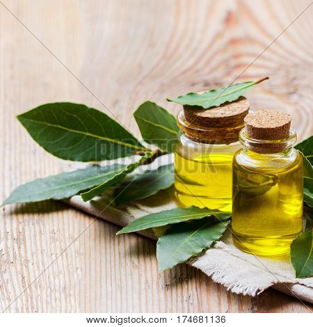Healthy lifestyle concept. Natural bay laurel essential oil, essence in glass bottle with leaves on a rustic wooden table for beauty, spa, therapy
