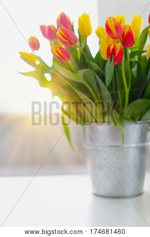 Multicolor Tulips In Galvanized Vase On The Table.