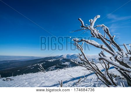 Winter landscape of a Karkonosze mountains as seen from the Szrenica mountain, Poland
