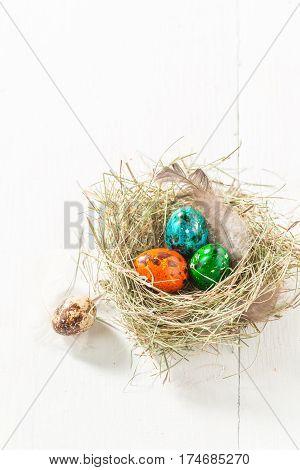 Colourfull Easter Eggs In Nest On White Table