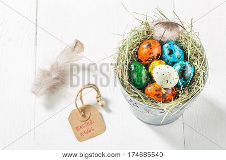 Quail Eggs For Easter With Feathers And Hay