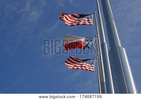 American And Texas Flags On A Windy Day