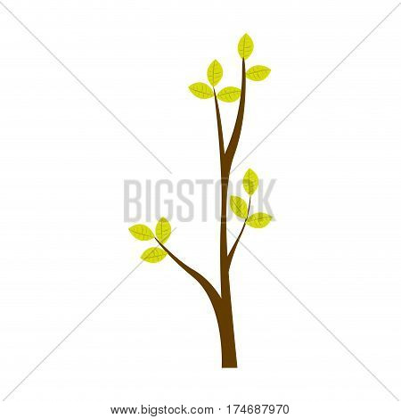 colorful ramification with leaves nature design vector illustration