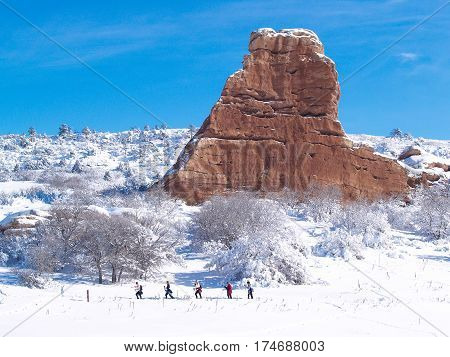 Winter Cross Country Skiing Blue Sky Outdoor Snow