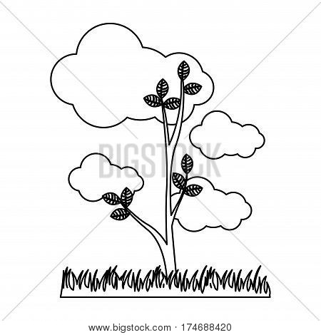 silhouette landscape with tree in pasture and cloud cumulus icon vector illustration