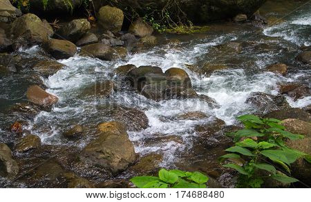 Forest stream among stones. Clean cold water stream in mountains. Fresh stream current between rocks. Rocky landscape with spring. Ecological tourism - hiking photo of fast river with clean water