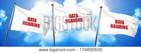 data roaming, 3D rendering, triple flags