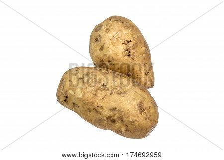 Two Pieces Of High Vitamin Organic Light Brown Yam, Isolated