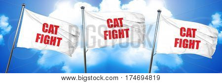 cat fight, 3D rendering, triple flags
