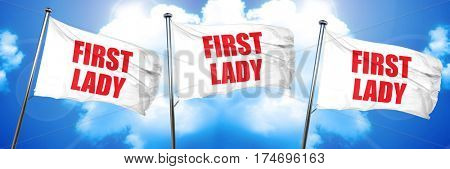 first lady, 3D rendering, triple flags
