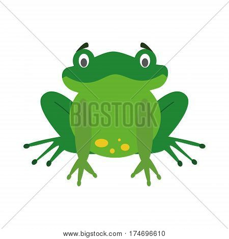 Cute frog in cartoon style vector illustration