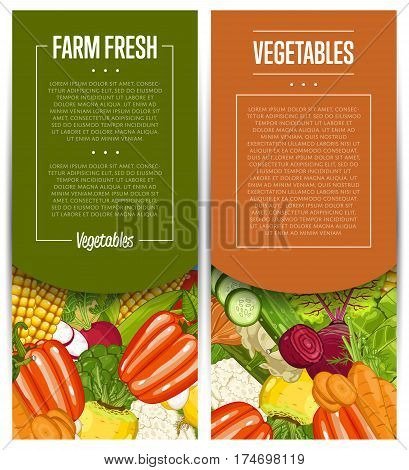 Organic vegetable farming flyers set vector illustration. Locally grown vegetable, vegan retail, natural product. Healthy farm food advertising with broccoli, potato, corn, cabbage, cucumber, radish