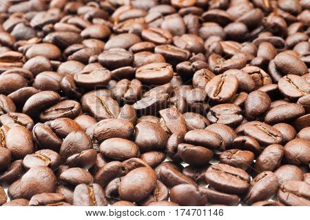 coffee bean old close up of brown