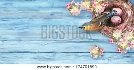 Watercolor spring background. Top view Easter composition. Bird at nest with eggs and spring flowers on blue wooden background