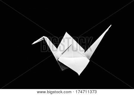 Origami Crane Isolated On Black Background