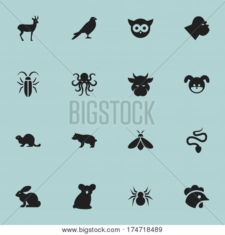 Set Of 16 Editable Zoology Icons. Includes Symbols Such As Rooster, Kine, Honey And More. Can Be Used For Web, Mobile, UI And Infographic Design.