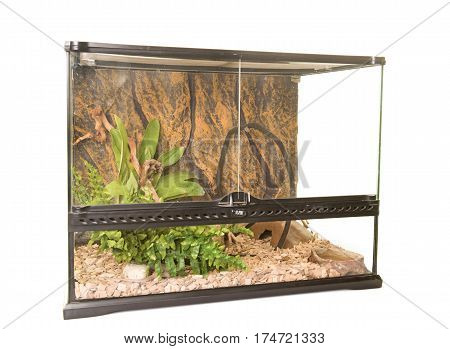 terrarium for reptile in front of white background