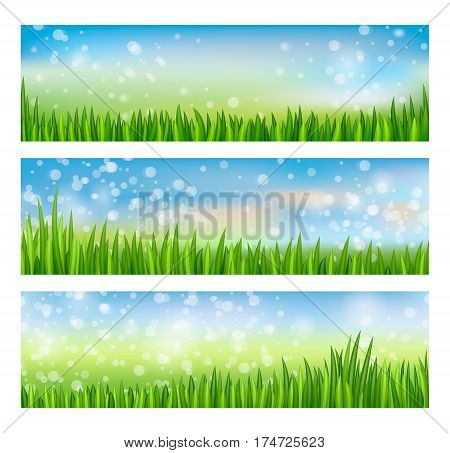 Nature landscape set with blue sky and green grass vector illustration. Realistic horizontal floral spring design, eco nature border, summer meadow collection, fresh environment background. Green grass concept. Vector landscape with green grass.
