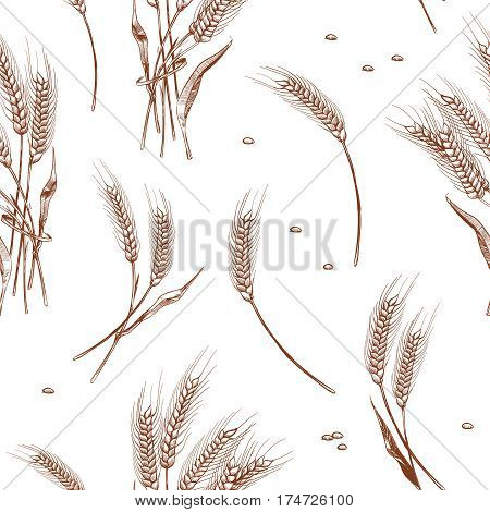 Organic wheat harvest, bakery seamless background. Seamless pattern with wheat ears illustration