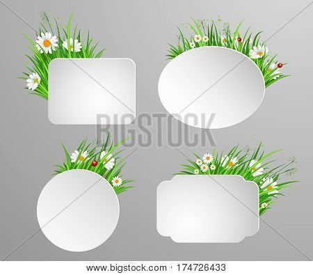 Spring flowers banner with chamomile flowers vector. Decorated spring flowers design for holiday. Vector flowers chamomile. Spring flowers concept. Summer flowers illustration. Bouquet of spring or summer flowers. Realistic vector flowers.