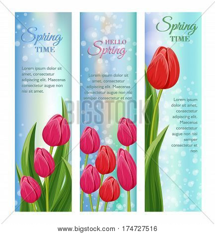 Spring flowers banners with blooming tulip flowers vector. Decorated spring flowers design for holiday. Vector flowers. Spring flowers concept. Summer flowers illustration. Bouquet of spring or summer flowers. Realistic vector flowers.