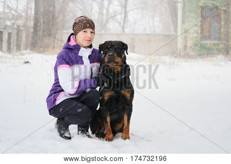 Young Woman outdoors with dog - Lord Rottweiler, winter season.