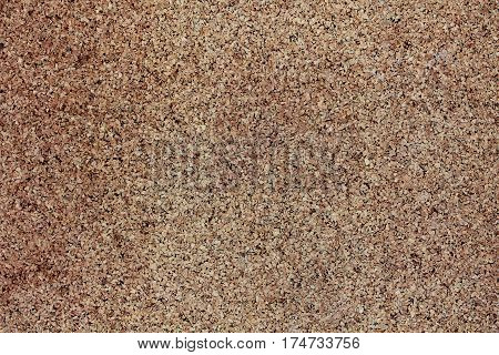 cork board in close up, texture and background