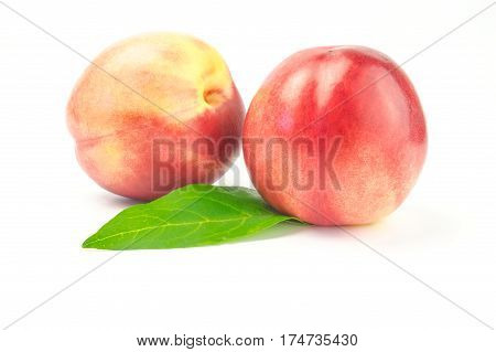 Two nectarines with green leaves isolated on white background cutout.