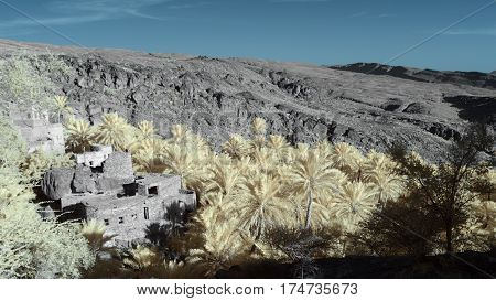 Infrared image of a dilapidated house in the midst of a date palm grove surrounded by hills