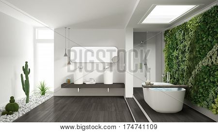 Minimalist White Bathroom With Vertical And Succulent Garden, Wooden Floor And Pebbles, Hotel, Spa,