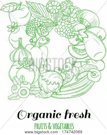 Letter D pattern logo of groceries organic farm fresh fruits and vegetables. Vector illustration logotype. Outline line flat style design. White backdrop.