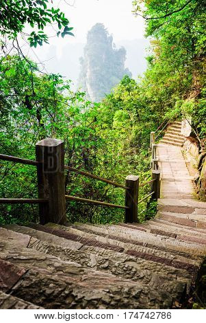 Scenic Stone Stairs Leading Along Steep Cliff (avatar Mountains)