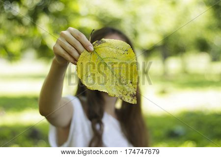 Girl Holding Autumn Leaves In His Hands